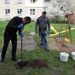 Проект «Комфортне місто» :сто нових дерев для Нововолинська!